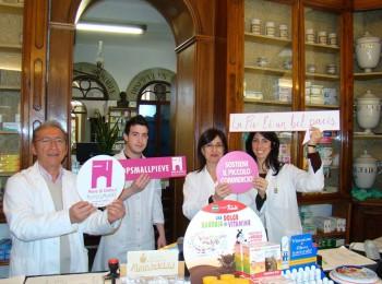 Farmacia immacolata minismart